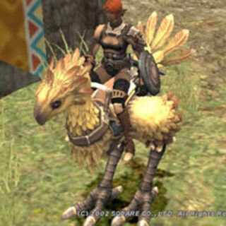 Chocobo | Final Fantasy Wiki | FANDOM powered by Wikia