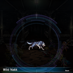 Wild Nakk (1).