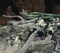 Ancient City FFVII-2.jpg