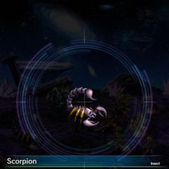 Scorpion (1).