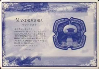 Mandragora-012-xiipin-card