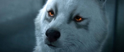Pryna-fiery-eyes-Omen-FFXV