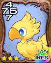 453x Chocobo