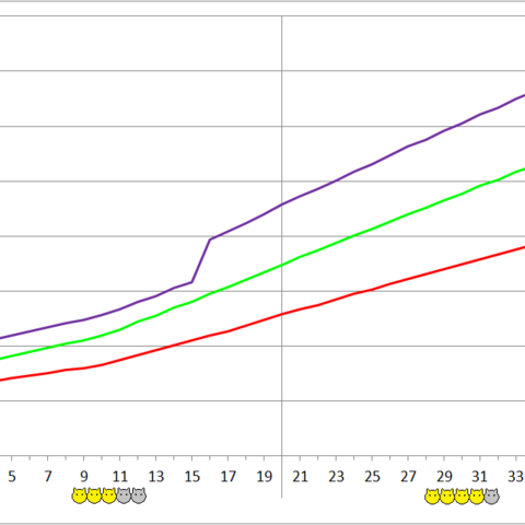 Munchkin Boss development chart.