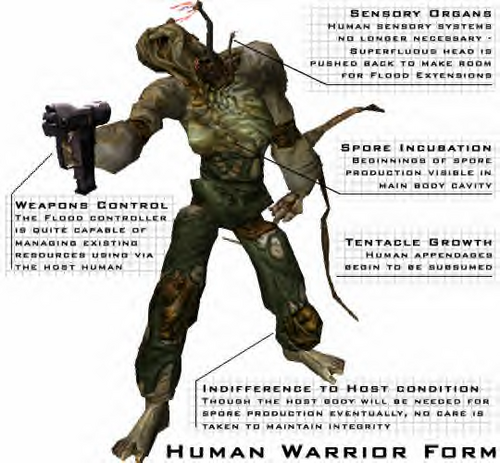 Warrior Form Human2