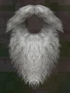 LRFFXIII Saint's Beard
