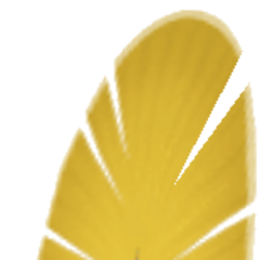 Bartz's Chocobo feather.