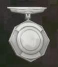 LRFFXIII Silver Insignia