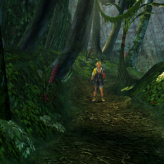 The western side of the woods in <i>Final Fantasy X</i>.