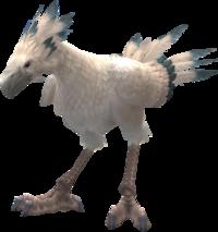 Chocobo bianco FFXII