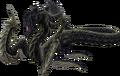 Vipère-méduse X