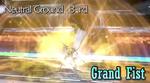 DFF2015 Grand Fist