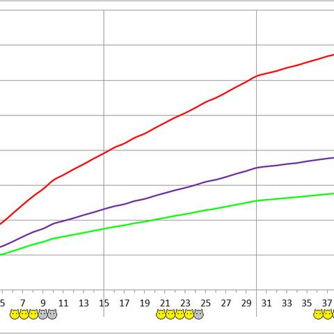 Cactuarina development chart.
