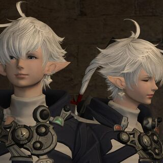 Alphinaud and Alisaie meet the Adventurer again in <a href=