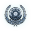 FFXV silver transport trophy icon