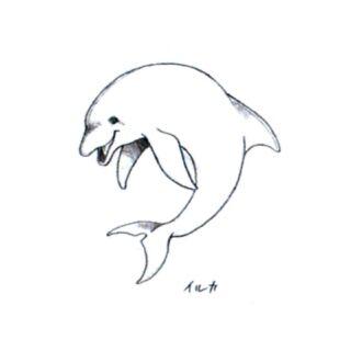 Dolphin.