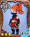 038c Ninja.png