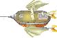 FFIVDS Falcon