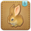 FFXIV Dwarf Rabbit Minion Patch