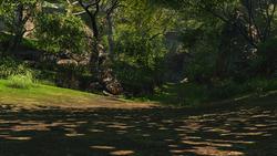 FFXIV Golmore Jungle