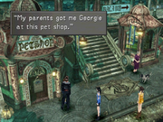 Timber-Pet-Shop-FFVIII