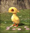 Trust029 Sakura