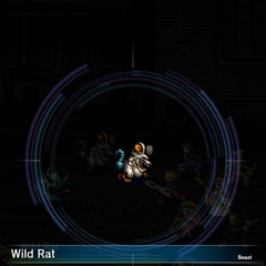 Wild Rat (1).