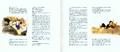 FFVI OSV Old Booklet7
