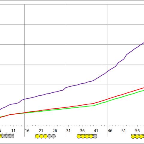 Flanbanero development chart.