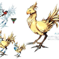 Chocobo Steed.