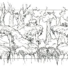 Древний лес.