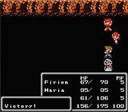 NES Victory FFII