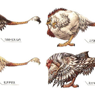 Cluckatrice is the second one in the first row.