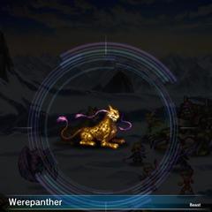 Werepanther.