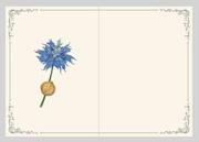 Lovers-Notebook-Sylleblossom-FFXV