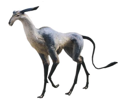 File:Antelope Enemy FFXIV.png