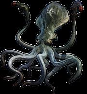 Kraken (FFXIV)
