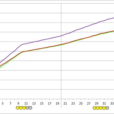 Thexteron development chart.