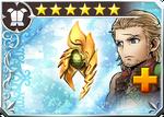 DFFOO Flame Shield (XII)+