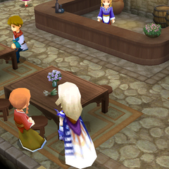 Items shop in the pub (DS/iOS).