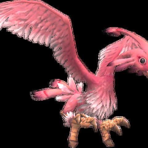 A pink variety of bird.
