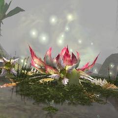 Rafflesia defeated.