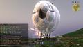 FFXIV Giant Sheep.png