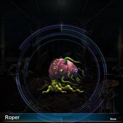 Roper (1).