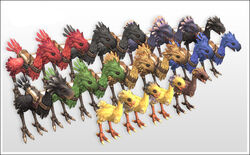 FFXI-ChocoboBreed