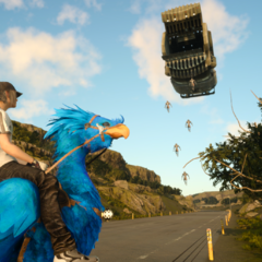 A blue chocobo.