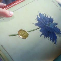 A pressed sylleblossom in the book.