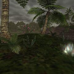 Ergon Locus<br />Luminous Isle