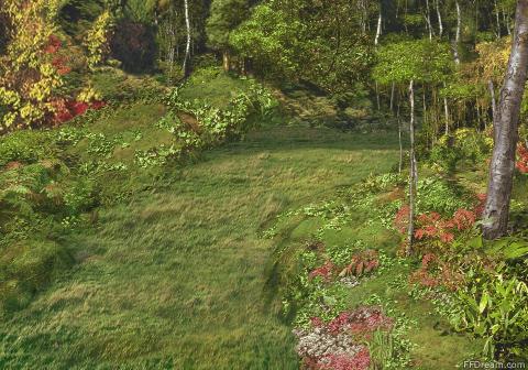 File:Chocobo Forest VIII 7.jpg