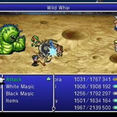 Wild Whip.